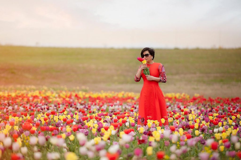 Tulip fields in virginia for family photo sessions